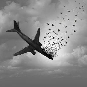 Pájaros impactan en avión